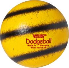 Dodge- / Völkerball Volley